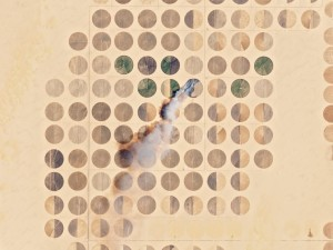 """Ein Feld brennt im ägyptischen Gouvernement """"Neues Tal"""". Anhand der täglichen Wiederkehrzeiten lässt sich die Entwicklung der Pflanzenstände ablesen. Bild: Planet"""