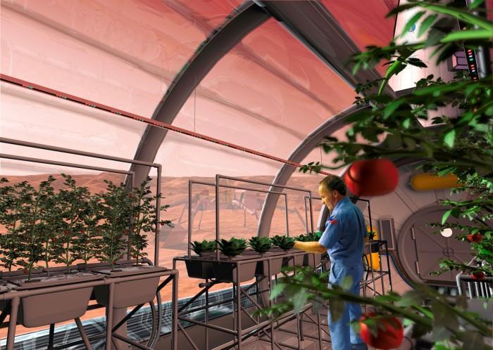 So stellt sich die NASA eine mögliche Pflanzenzucht auf dem Mars vor. Bild: NASA